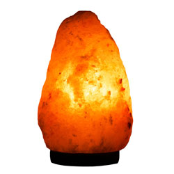 The Facts on Salt - Himalayan Salt Himalayan Salt Supplier Bulk Himalayan Salt Himalayan ...
