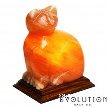 Cat Crystal Salt Lamp