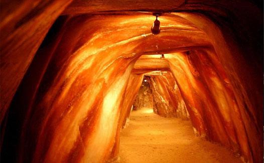 Evolution Salt Himalayan Salt Pink Salt Himalayan Salt